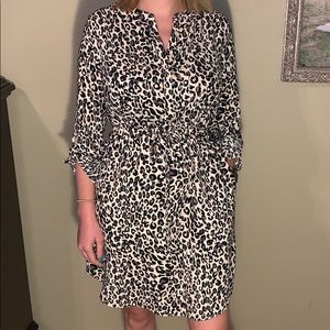 Leopard work dress!